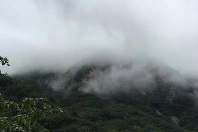雨后仙境一般的九山顶景区